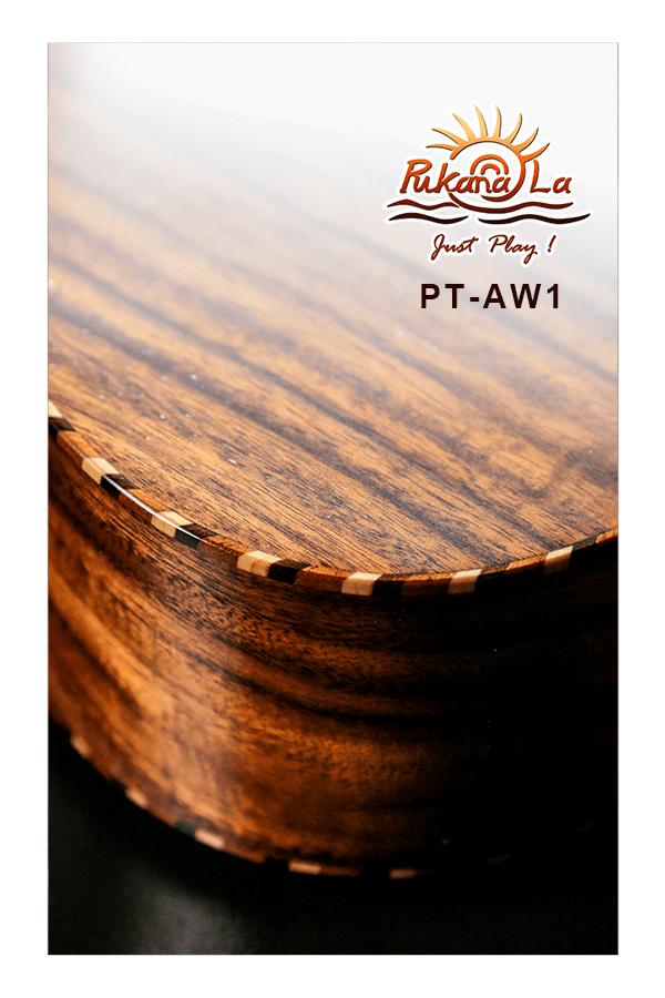 PT-AW1-09