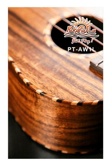 PT-AW1L-09