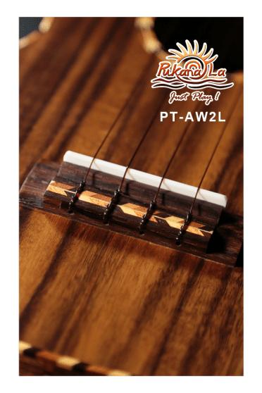 PT-AW2L-07