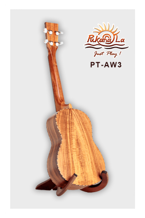 PT-AW3-04
