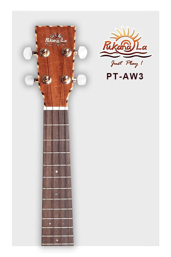 PT-AW3-05
