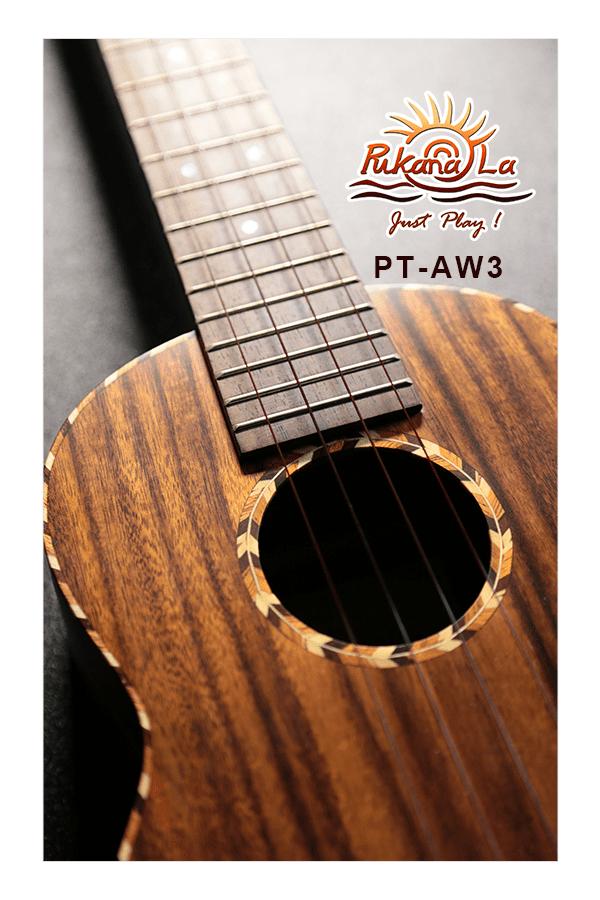 PT-AW3-07