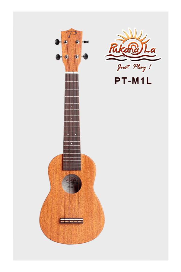 PT-M1L-01