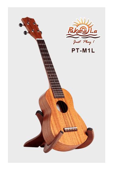 PT-M1L-03