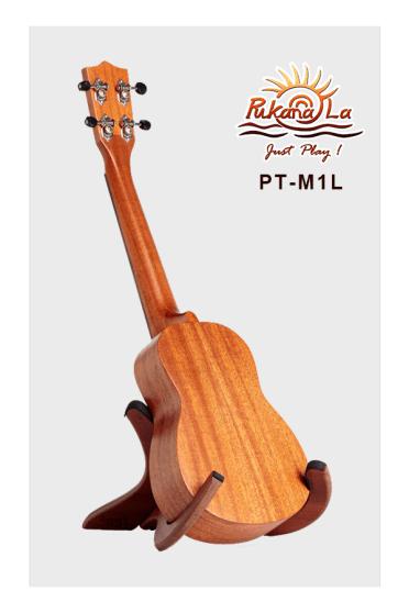 PT-M1L-04