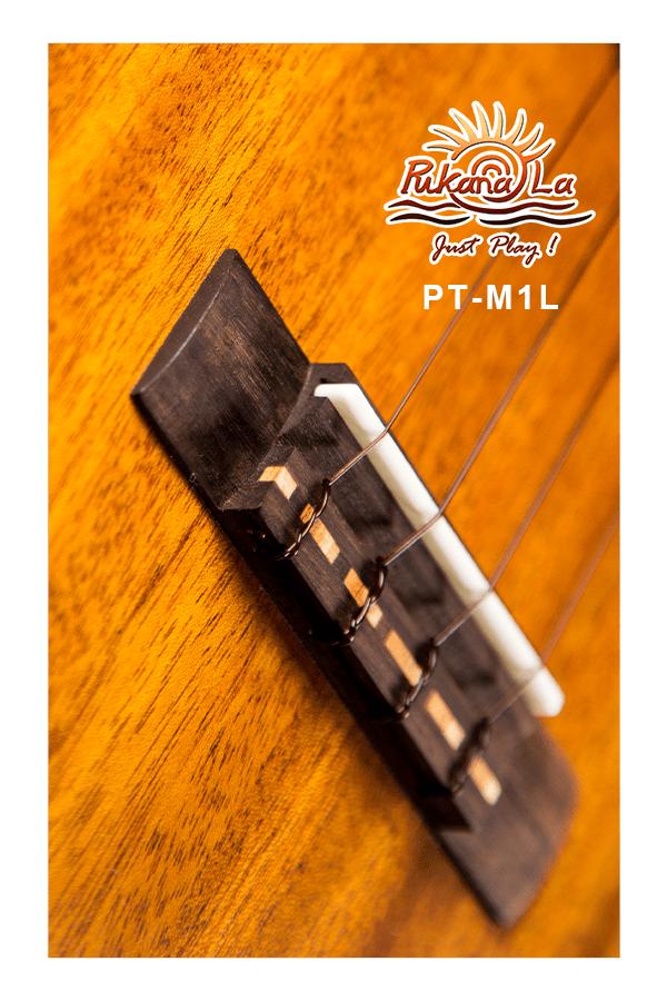 PT-M1L-09