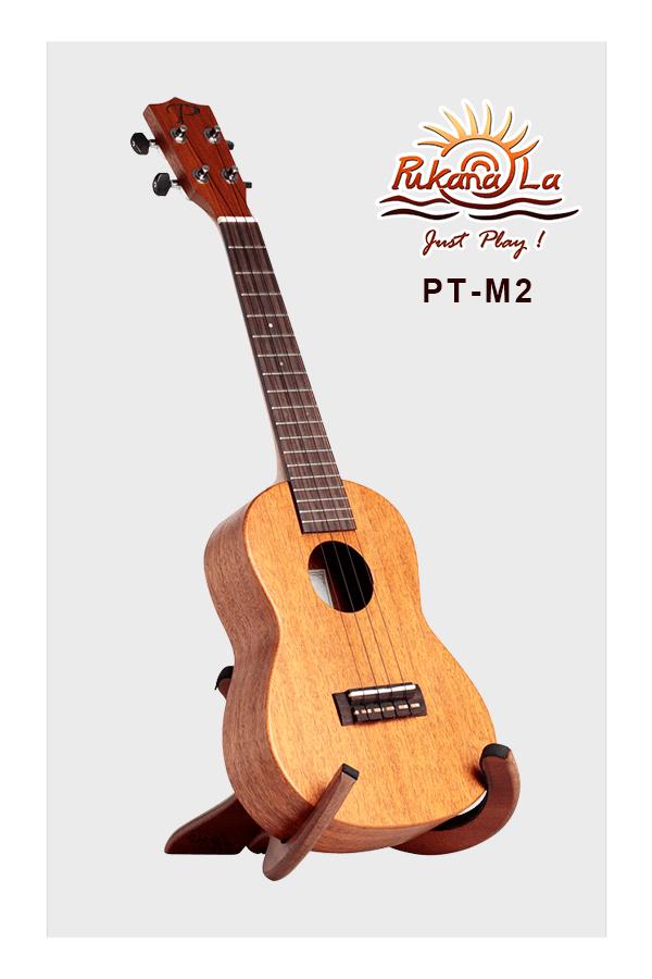 PT-M2-03