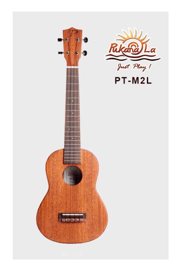 PT-M2L-01