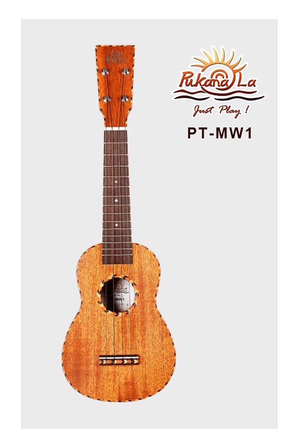 PT-MW1-01