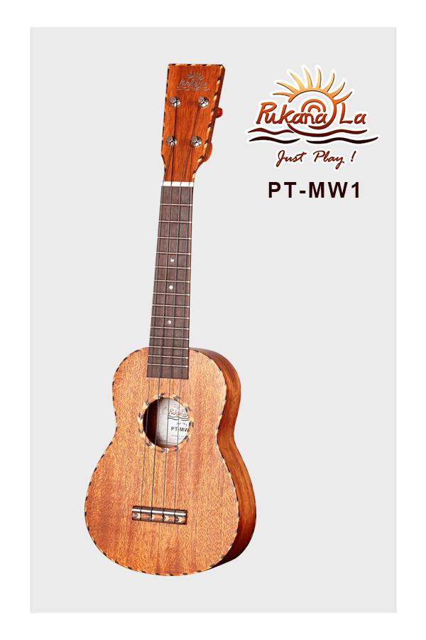PT-MW1-03