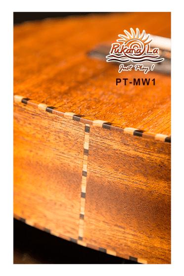 PT-MW1-07