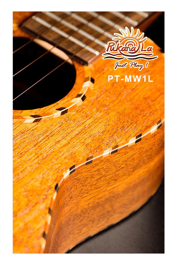 PT-MW1L-08