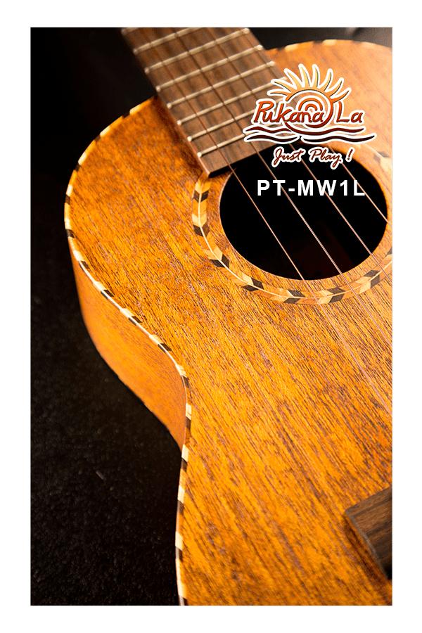 PT-MW1L-10
