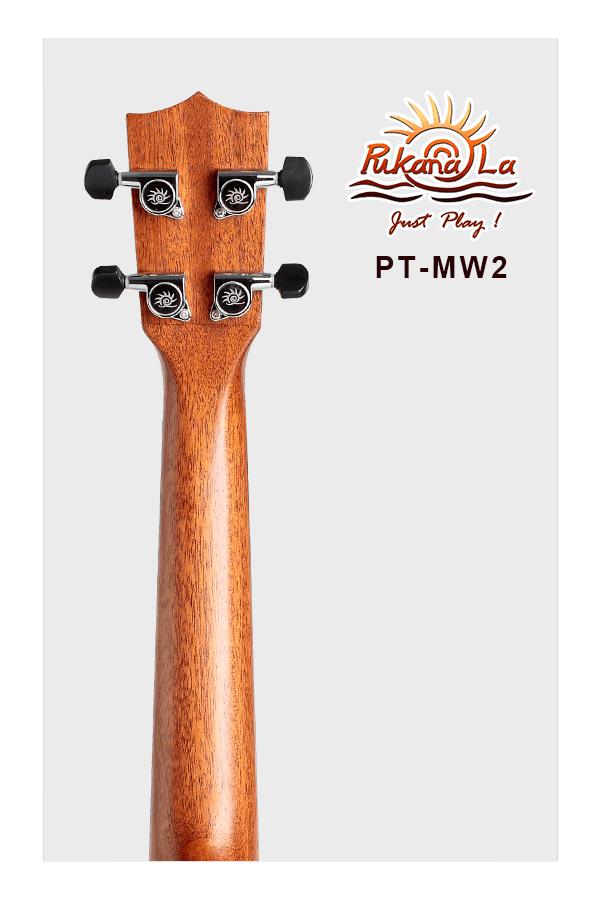 PT-MW2-06
