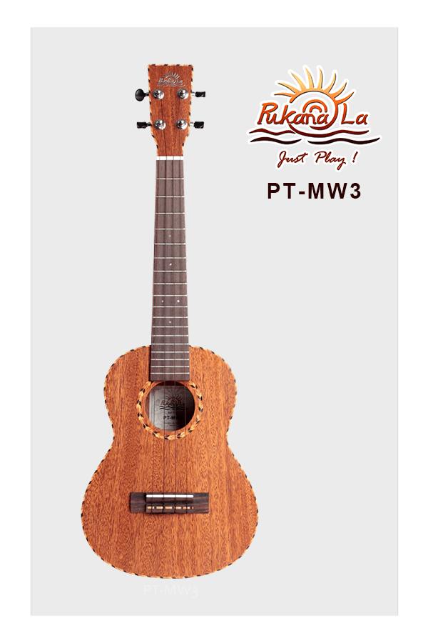 PT-MW3-01