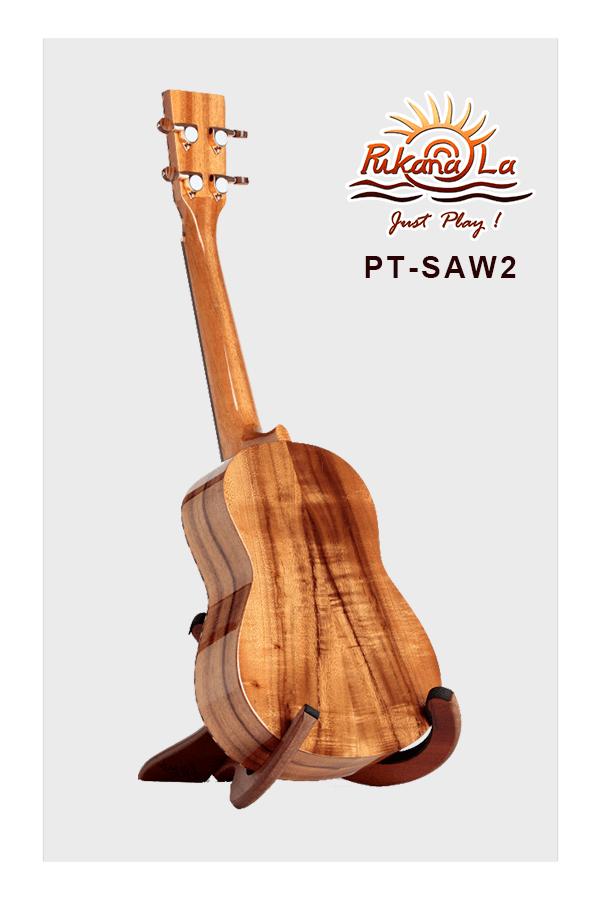 PT-SAW2-04