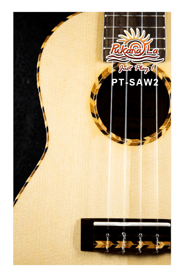 PT-SAW2-08
