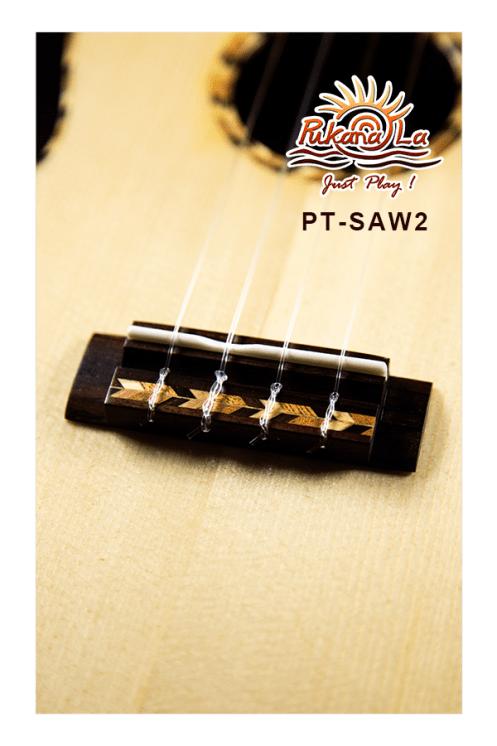 PT-SAW2-10