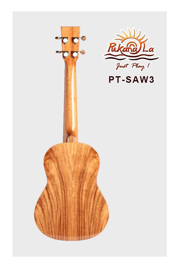 PT-SAW3-02
