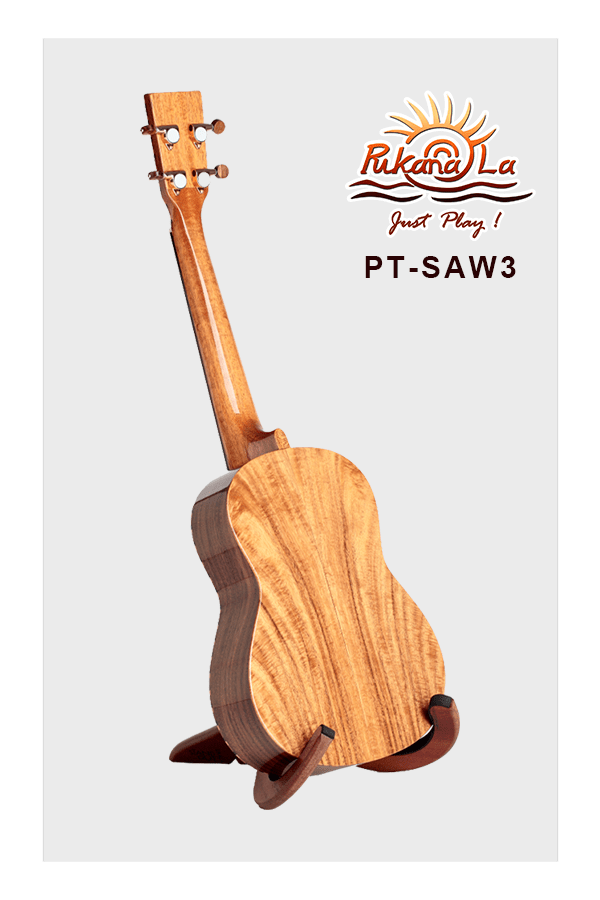 PT-SAW3-04