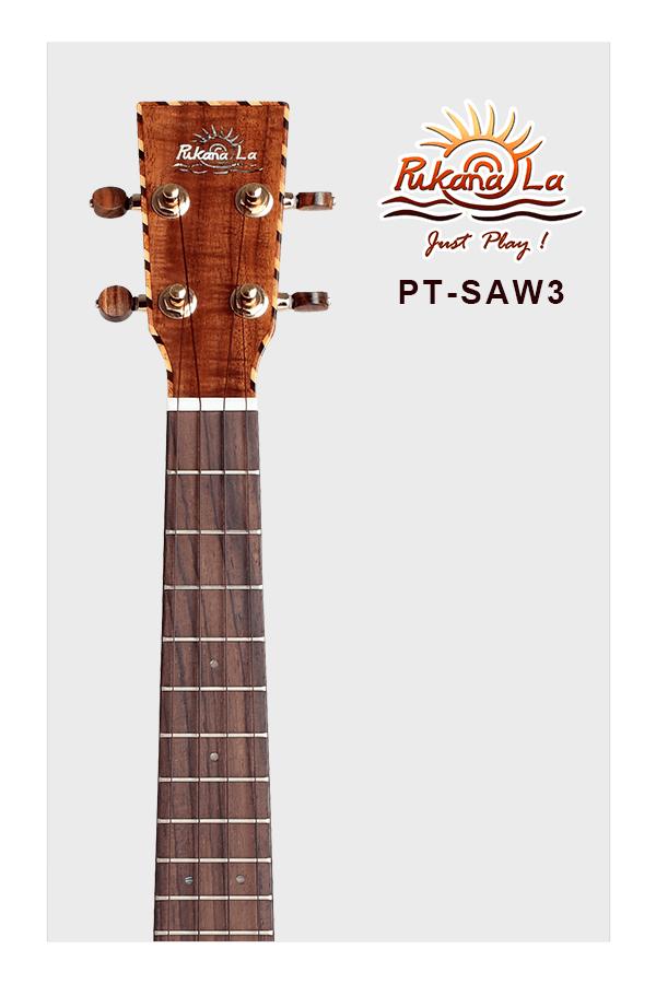 PT-SAW3-05