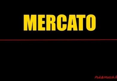 Mercato – Nouvelle recrue au MARQUISAT