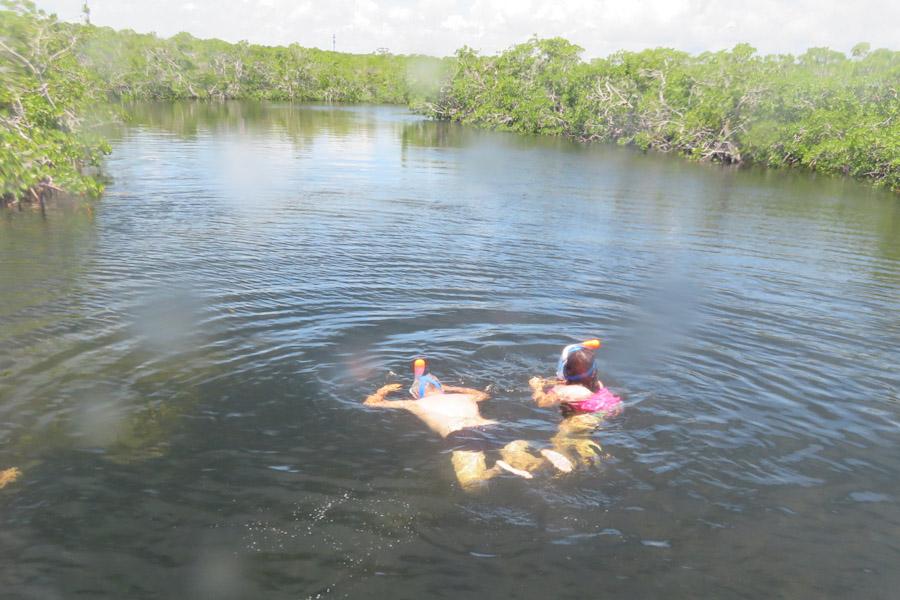Snorkelen Key Largo - Sabine en Edwin