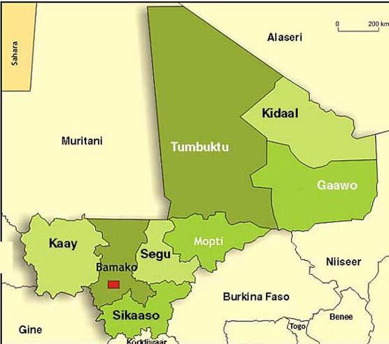 Kartal Mali