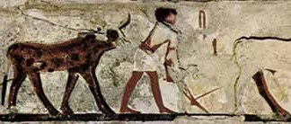 Egypte3.jpg
