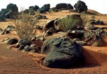 les lieux au Tagant Mauritanie