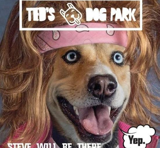 Ted's Dog Park opens today at Ted's Refreshments in Tempe