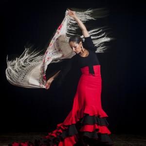 Flamenco_dancer_3467