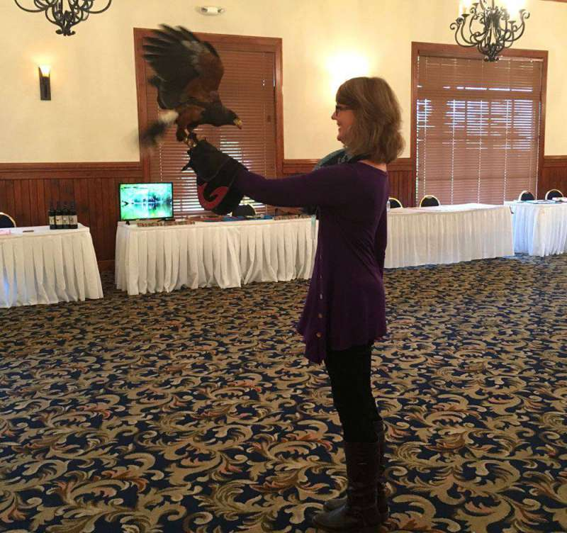 Falconry-at-Dillard-House-F