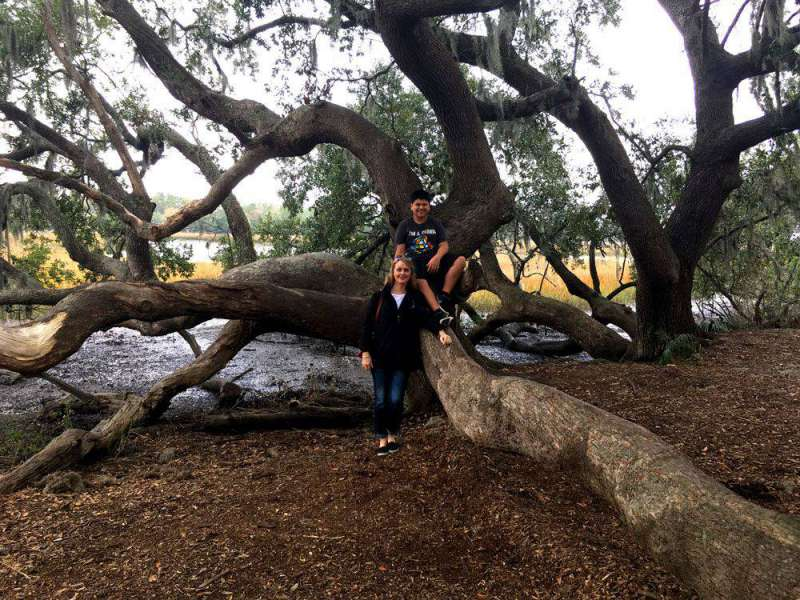 tree-at-Boone-Hall-Plantati