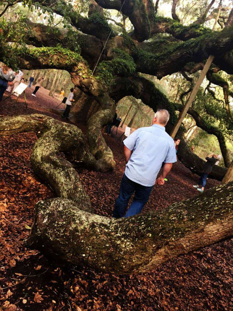 exploring-Angel-Oak-Johns-I