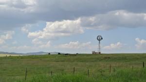 Grasslands in Sonoita AVA