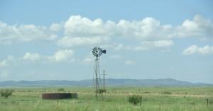 Grassland in Sonoita