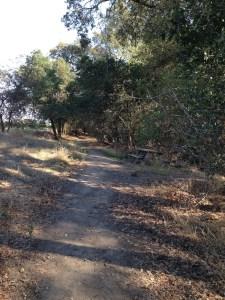 Heritage Oak Trail