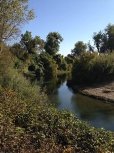 Mokelumne River along Heritage Oak Trail