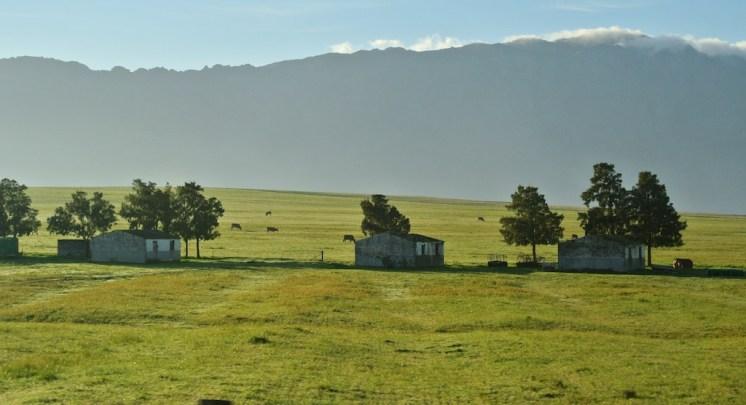 South African farm