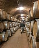 Wine-caves-Rombauer