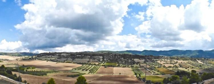 VineyardviewsGulfi