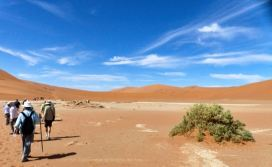 Walk to Deadvlei