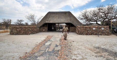 Arriving at Ongava airstrip