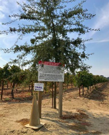 Heritage Oak trail marker