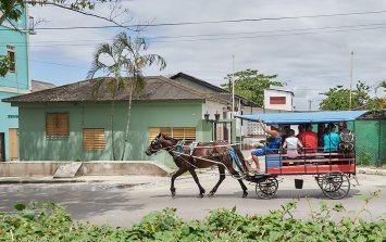 Horse drawn cab