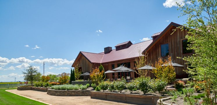 East Patio Oak Farm Vineyards