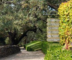 Jordan Vineyard and Winery certifications