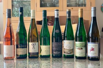 German Wine Exploration