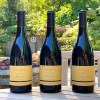 Gary Farrell Pinot Noir featured photo